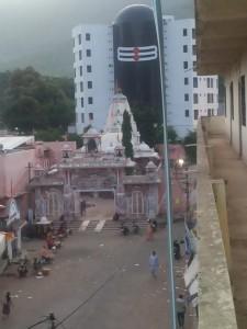 Shiva Linga elevation behind Bhavnath Temple